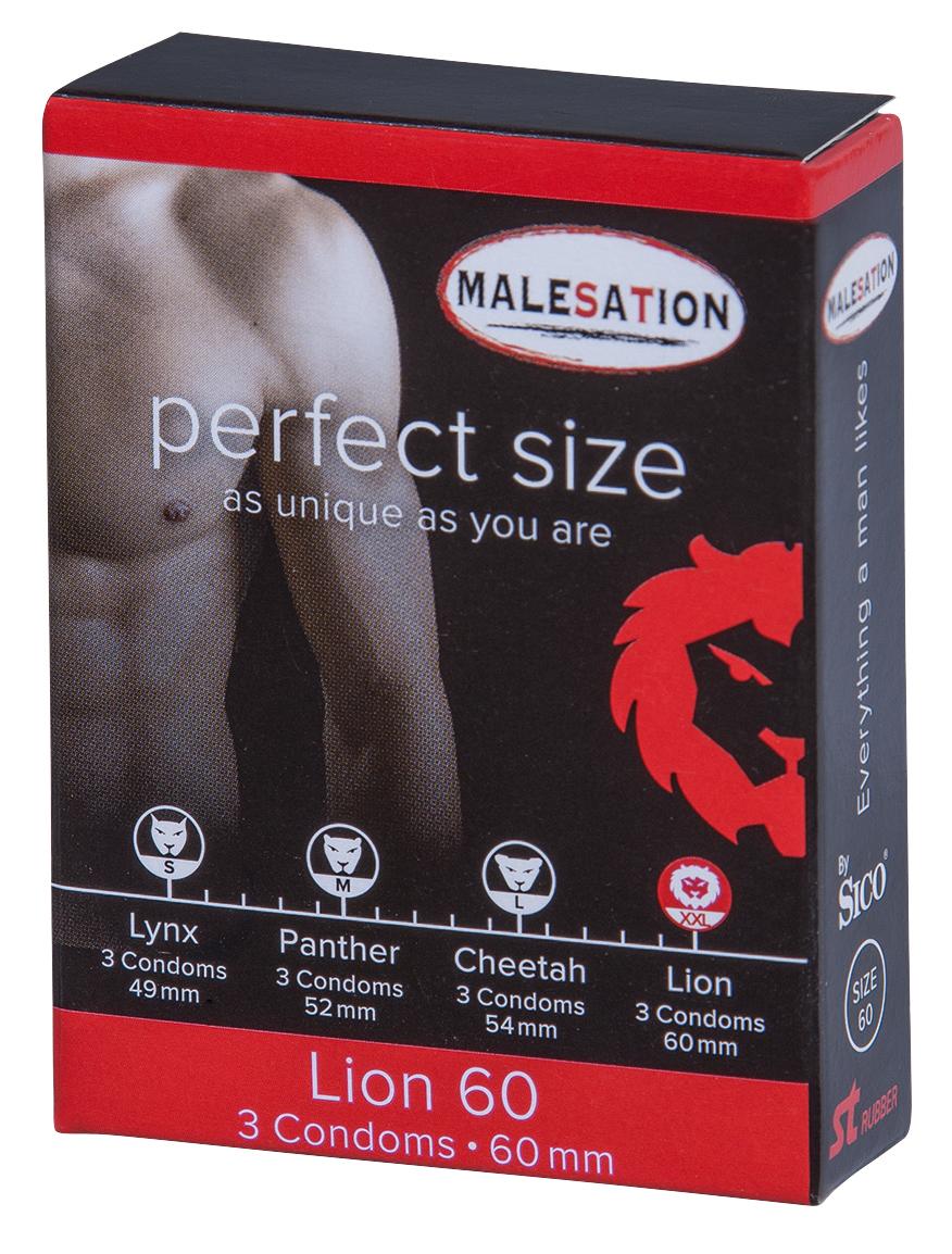 MALESATION Lion 60